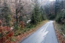 Uphill Przehyba szansą na kultową polską imprezę