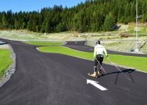 Norwedzy chcą mieć 100 torów nartorolkowych