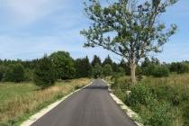 Tak wygląda trasa Leśnego Uphillu [ZDJĘCIA]