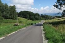 Trasa rajdu będzie przebiegać m.in. po trasie  Kamyk Uphill, tyle że w odwrotnym kierunku