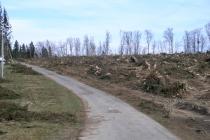 Zniszczony przez huragan tor nartorolkowy na Jamrozowej Polanie [FOTORELACJA]