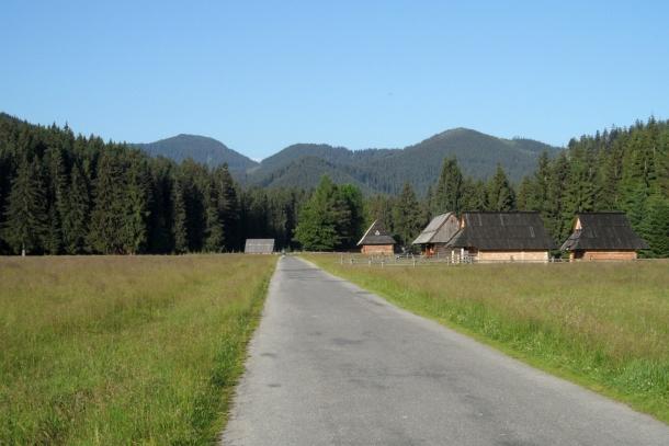 Na rolkach terenowych w Tatrach w Dolinie Chochołowskiej