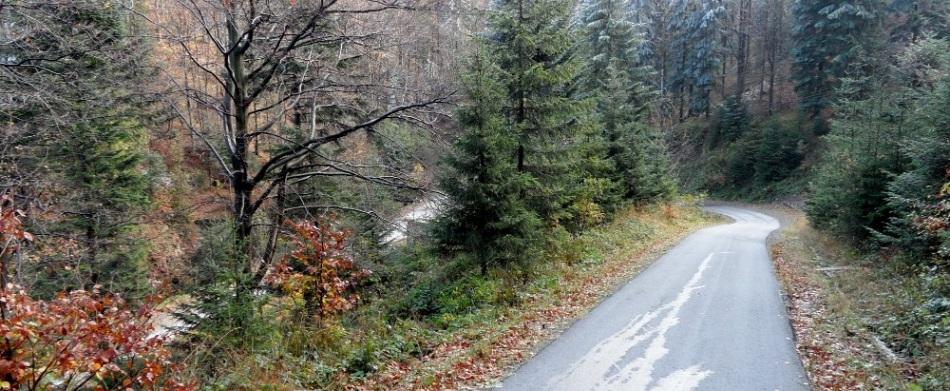 Urokliwa trasa Przehyba Uphill