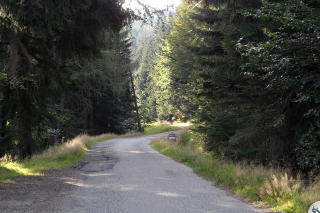 Pokrywa asfaltowa nieco już sfatygowana