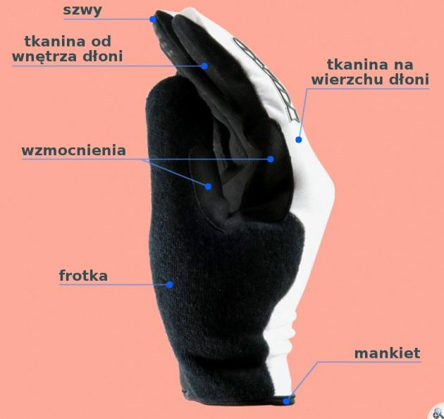 Budowa rękawiczki na nartorolki
